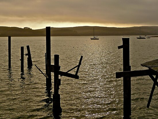 Marshal, Tomales Bay by Scott Johnson