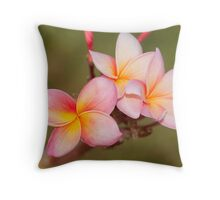 Tropicana - frangapani flower Throw Pillow