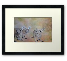 The Roos Framed Print