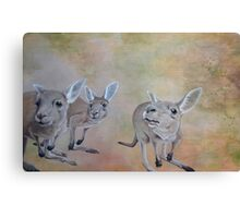 The Roos Canvas Print