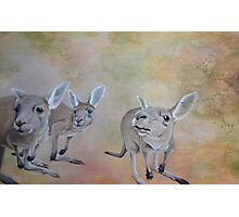 The Roos Photographic Print