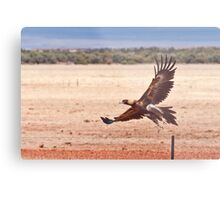 The Launch Metal Print