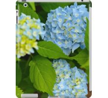 Blue Hydrangea in The Garden iPad Case/Skin