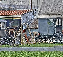 Amish Carriages by Sighthound