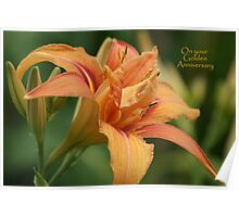 Day Lily - Golden Anniversary Poster