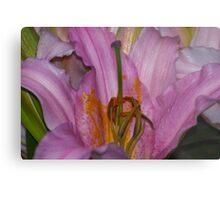 Sunny Bonaire Oriental Lily Metal Print