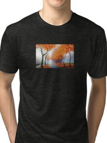 Landscape Photo Tri-blend T-Shirt