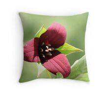 Trillium 2 - Muskoka, Ontario Throw Pillow