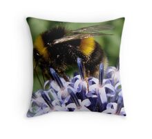 Bee on Echinops Throw Pillow
