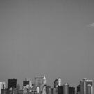 Manhattan by thomasrichter