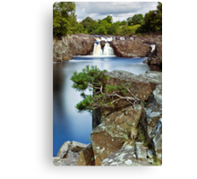 The River Tees at Low Force Canvas Print