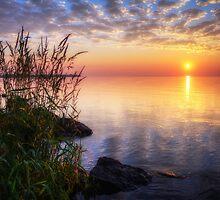 Guten Morgen by Jigsawman
