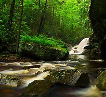 Red Run Falls by LeeAnne Emrick