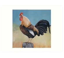 Morning Rooster Art Print
