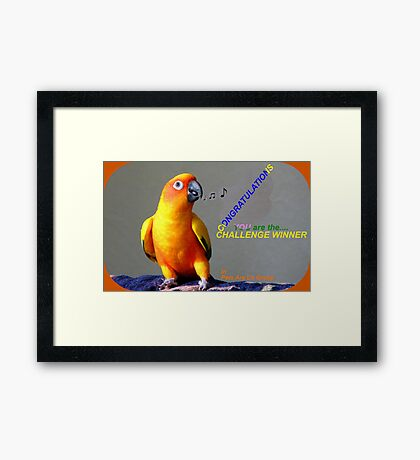CONGRATULATIONS - Challenge winner - Pets Are Us Framed Print