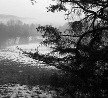 WV Winter Landscape by Sandra Hopko