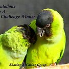 CONGRATULATIONS! - Top 10 Challenge Winner - Sharing &amp; Caring by AndreaEL