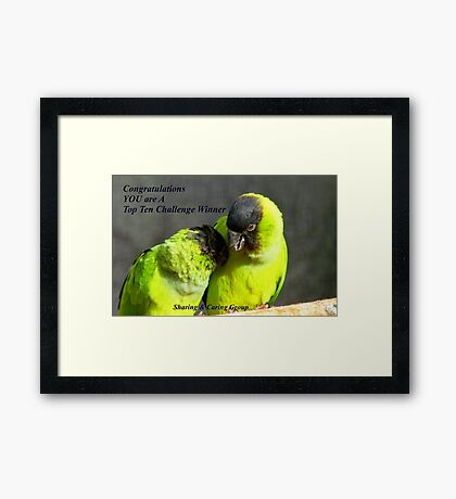 CONGRATULATIONS! - Top 10 Challenge Winner - Sharing & Caring Framed Print