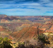 Canyon Colors by Diana Graves Photography