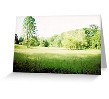 IN THE FIELD Greeting Card