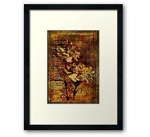 Carnation Rhapsody Framed Print