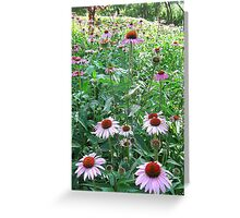 Bronx Garden  Greeting Card