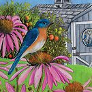 Bluebird In My Backyard by Jedro