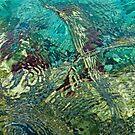 Anemone  by Cheryl  Lunde