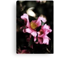 Camellias In The Rain Canvas Print