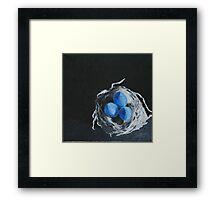 Blue Bird Eggs Framed Print