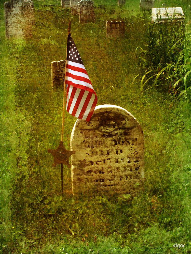 In Honor Of Our Fallen Heros by vigor