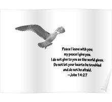 Seagull with John 14:27 Verse Poster