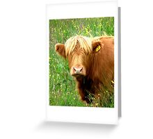 Buttercup says ' Who said beefburger ?'............ Greeting Card