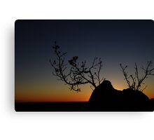Sunset Silhoutte, Pinnacles, WA   Canvas Print