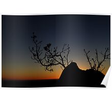 Sunset Silhoutte, Pinnacles, WA   Poster