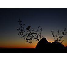 Sunset Silhoutte, Pinnacles, WA   Photographic Print