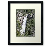 *RAW POWER* Framed Print