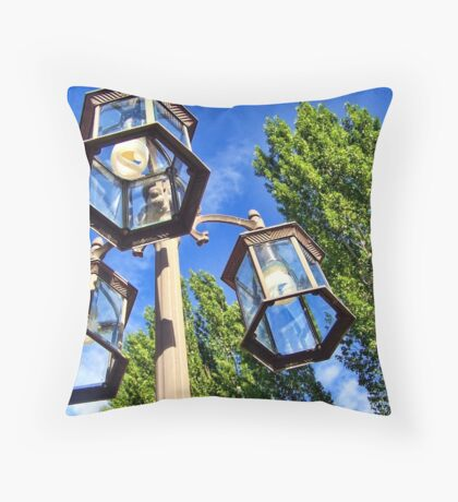 A Union of 2 Centuries Throw Pillow
