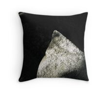 Granite Triangle Throw Pillow
