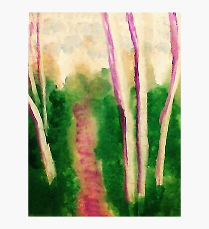 Down the wooded path, watercolor Photographic Print
