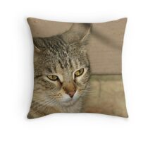 Coontail Throw Pillow