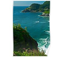 Heceta Head Viewpoint Poster