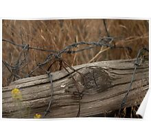 Old Fence. Poster
