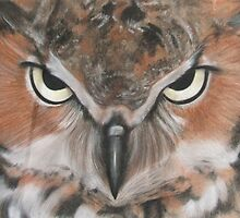 Angry Owl by Melissa Raposa
