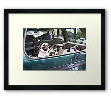 Doggie Car Pooling Framed Print