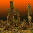 Cacti at sunset by Marlies Odehnal