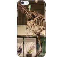 Pretty Allosaurus iPhone Case/Skin
