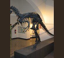 Ancient Allosaurus Unisex T-Shirt