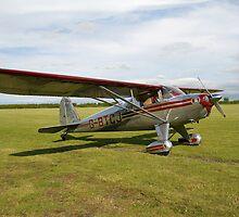 Luscombe , a light aircraft. by sandyprints
