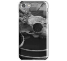 Remnants  iPhone Case/Skin
